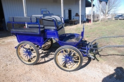 The Frontier Equestrian  Marathon Carriage - Blue and Gold